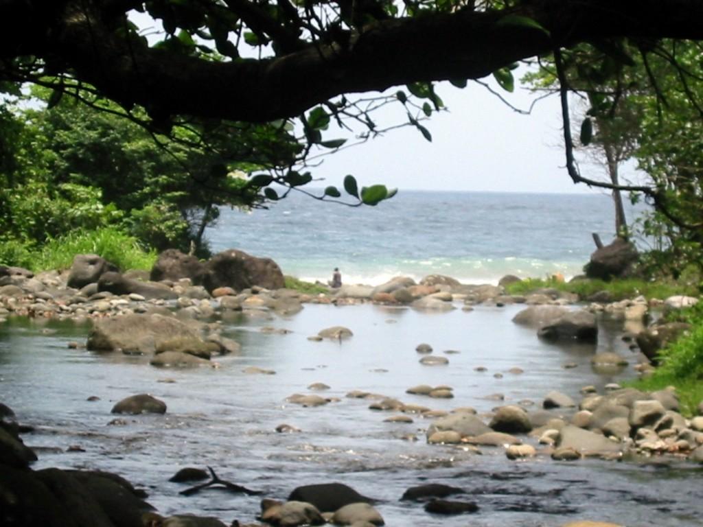 Taberi rivière