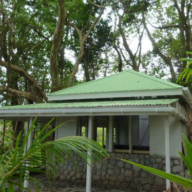 Banyan Stone Tree House